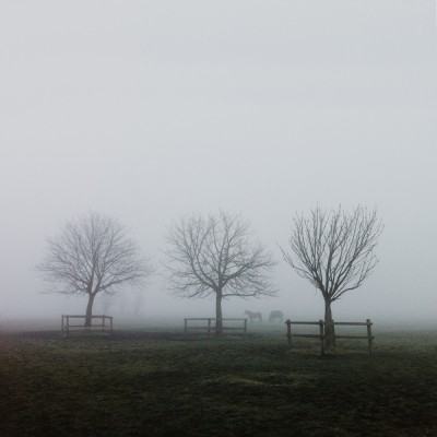 iPhone photography - foggy lincoln west common